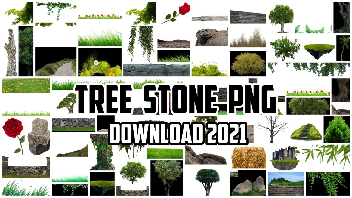 Tree Stone PNG Download